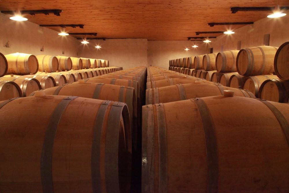vin-et-elevage-chateau-laujac